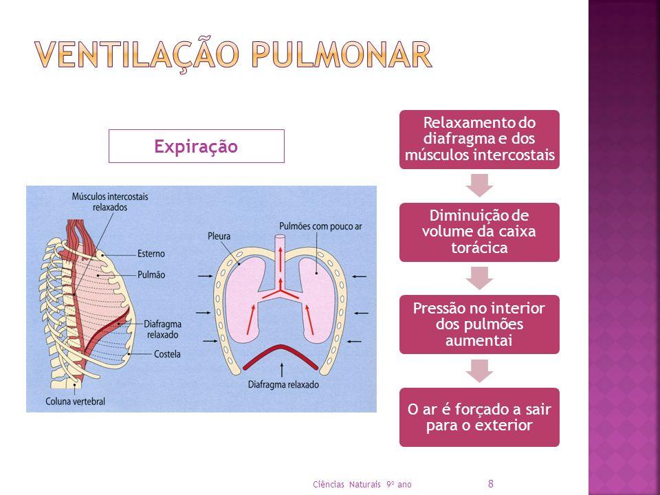 Ventilação pulmonar Expiração Ciências Naturais 9º ano