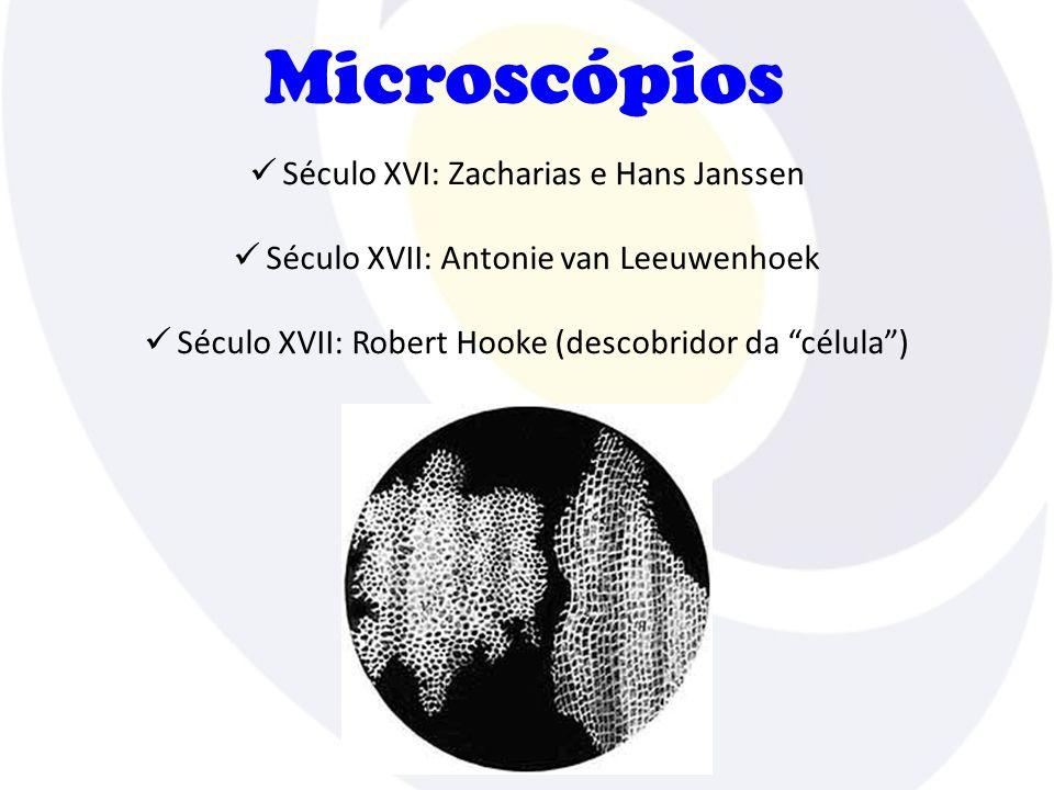 Microscópios Século XVI: Zacharias e Hans Janssen