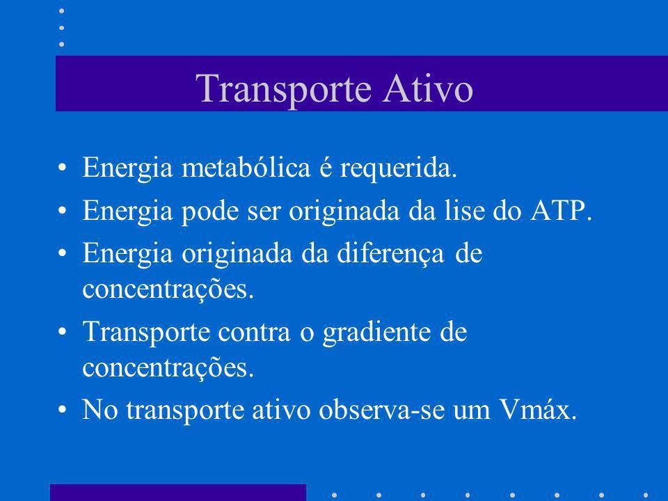 Transporte Ativo Energia metabólica é requerida.