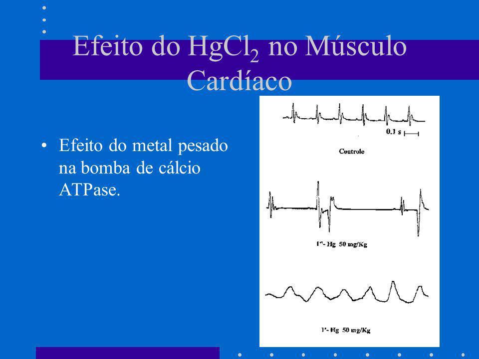 Efeito do HgCl2 no Músculo Cardíaco