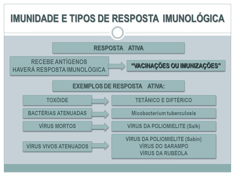 IMUNIDADE E TIPOS DE RESPOSTA IMUNOLÓGICA