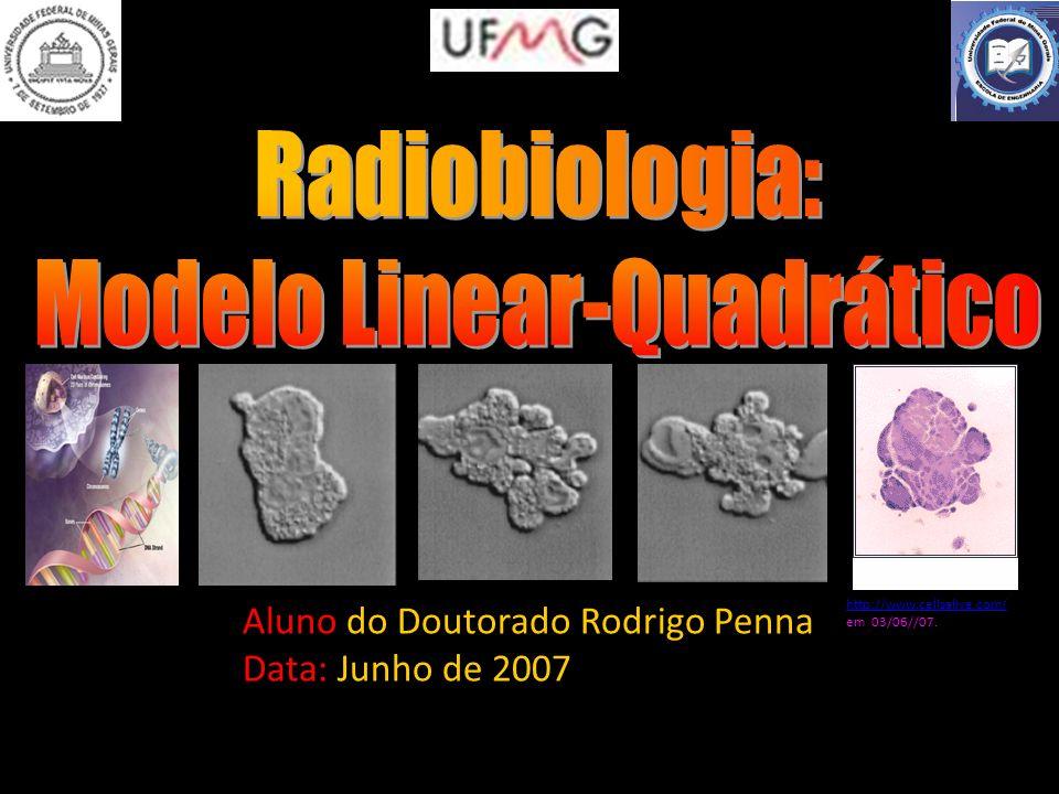 Aluno do Doutorado Rodrigo Penna Data: Junho de 2007