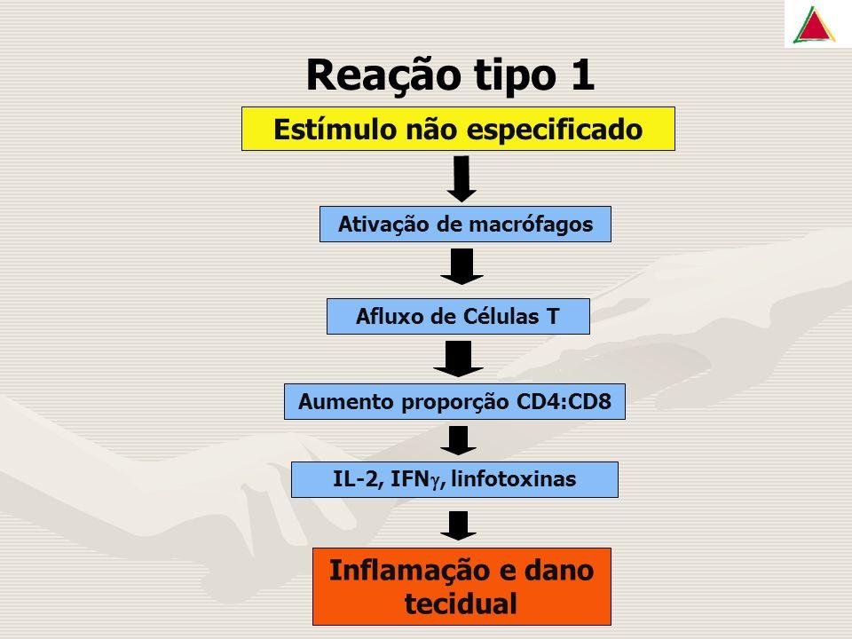 Reação tipo 1 Estímulo não especificado Inflamação e dano tecidual