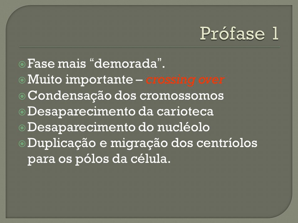 Prófase 1 Fase mais demorada . Muito importante – crossing over