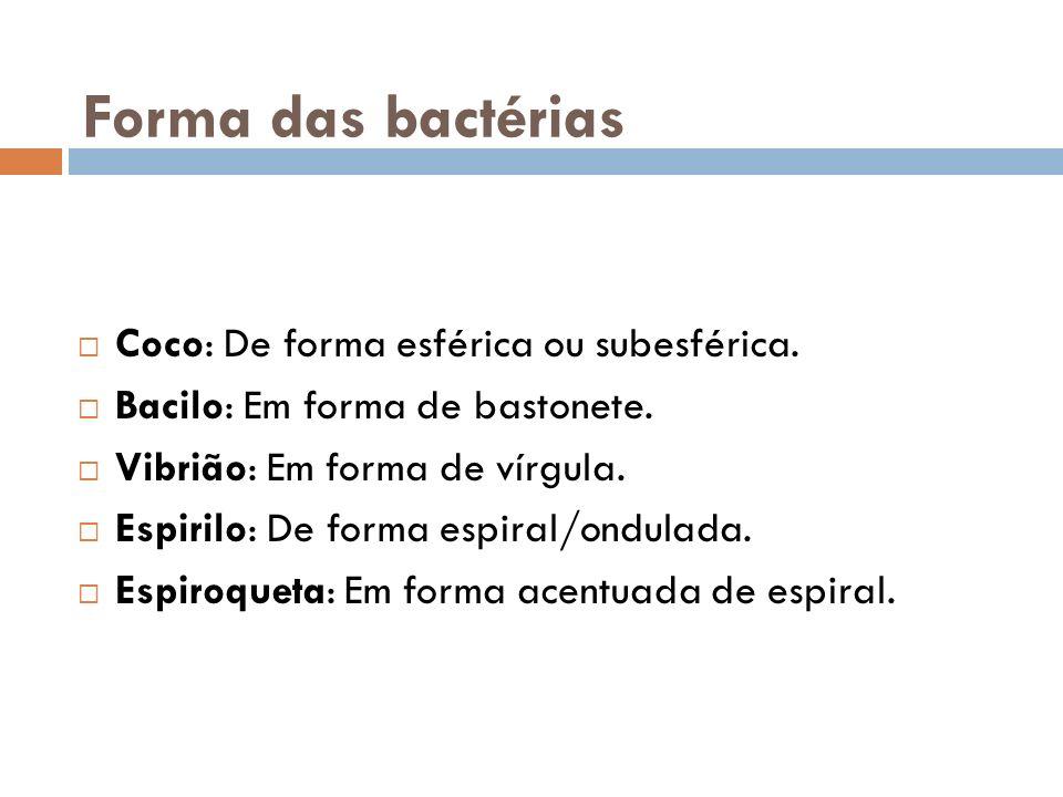 Forma das bactérias Coco: De forma esférica ou subesférica.