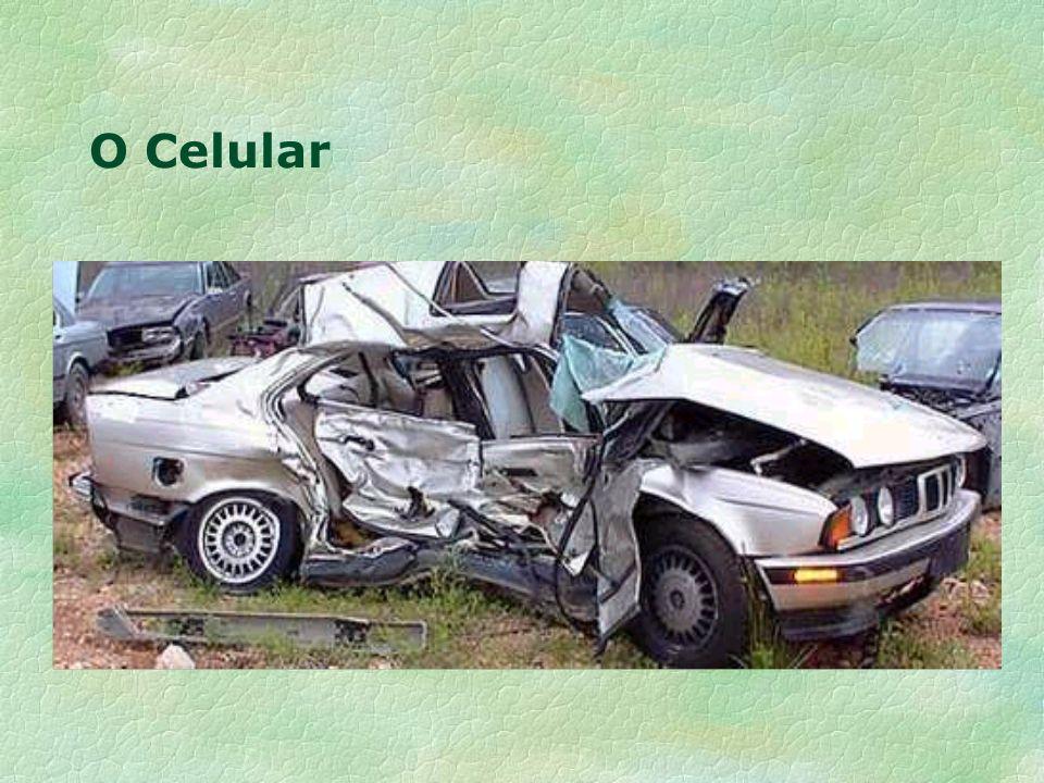 O Celular
