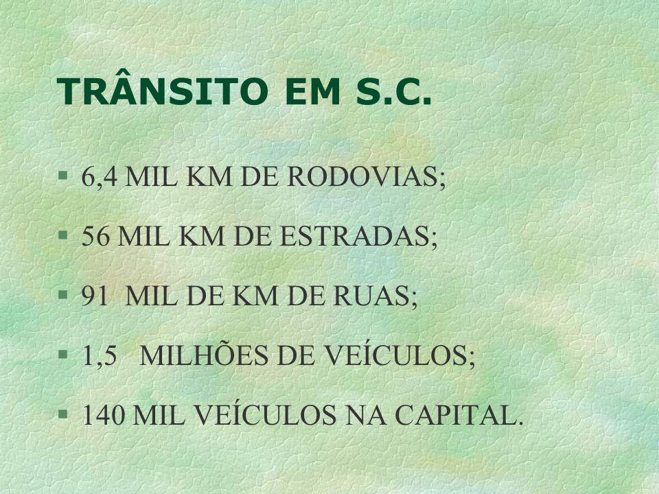 TRÂNSITO EM S.C. 6,4 MIL KM DE RODOVIAS; 56 MIL KM DE ESTRADAS;