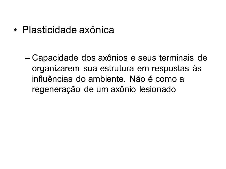 Plasticidade axônica