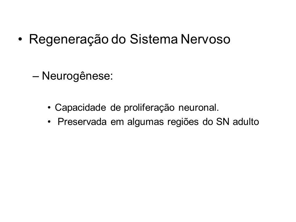 Regeneração do Sistema Nervoso