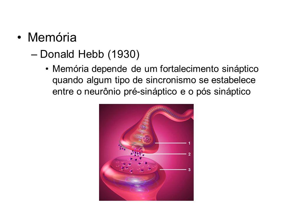 Memória Donald Hebb (1930)
