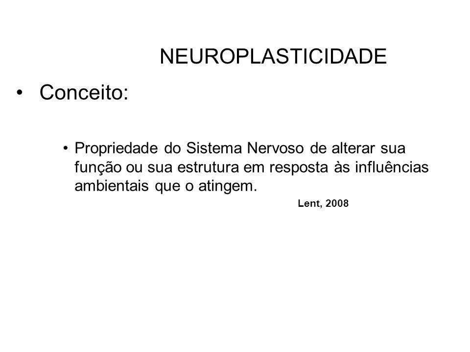 NEUROPLASTICIDADE Conceito: