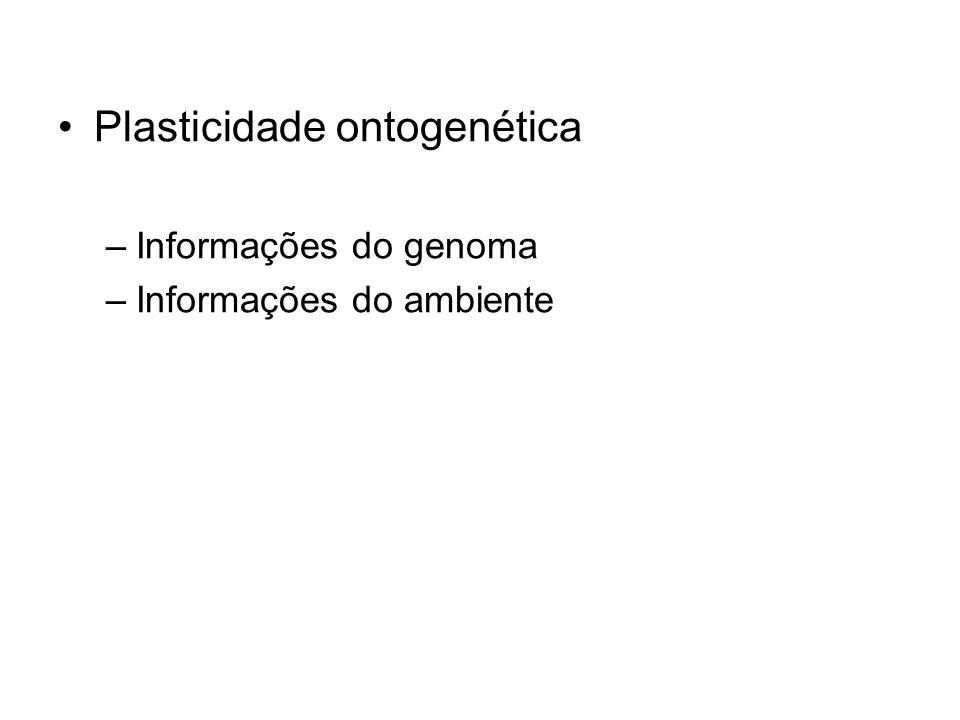 Plasticidade ontogenética