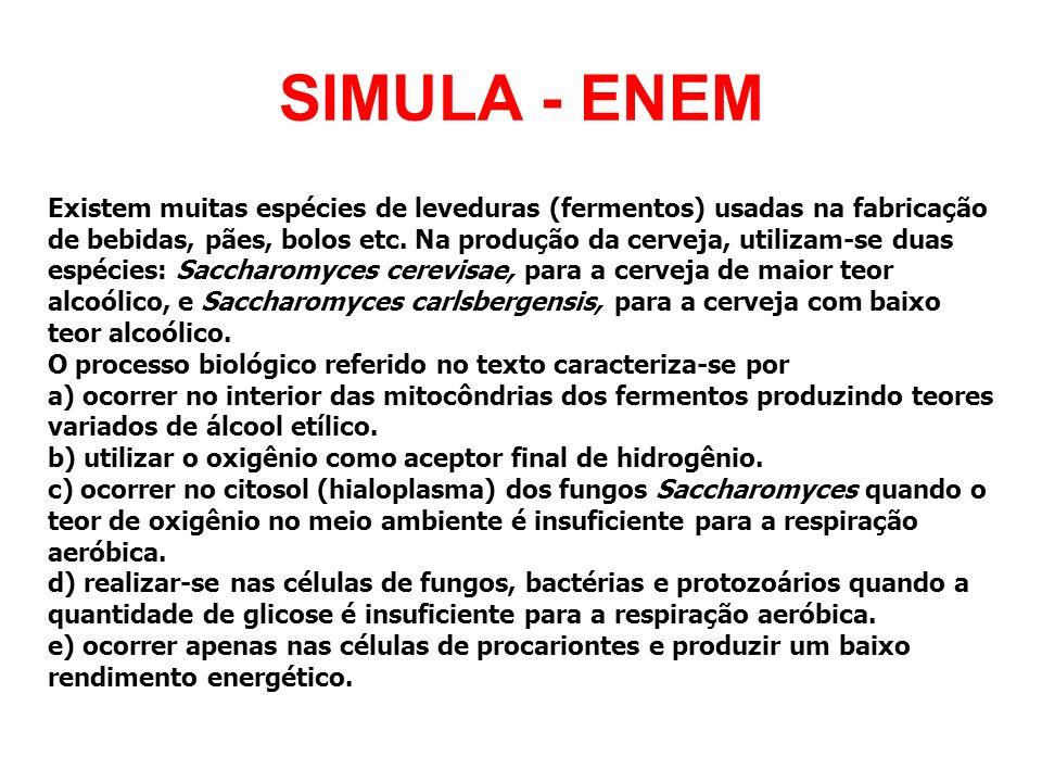 SIMULA - ENEM