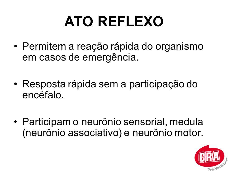 ATO REFLEXO Permitem a reação rápida do organismo em casos de emergência. Resposta rápida sem a participação do encéfalo.
