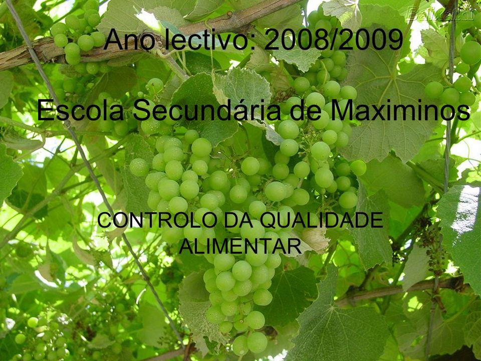 Escola Secundária de Maximinos