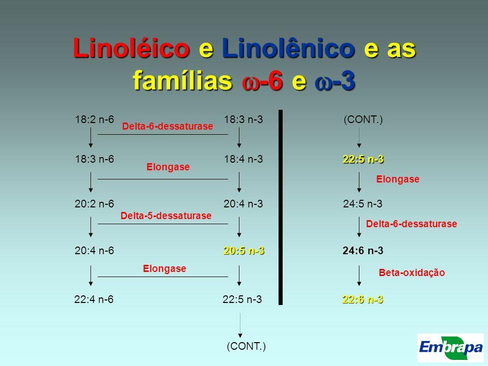 Linoléico e Linolênico e as famílias -6 e -3