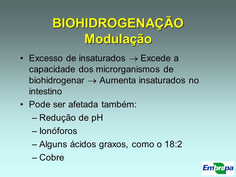 BIOHIDROGENAÇÃO Modulação