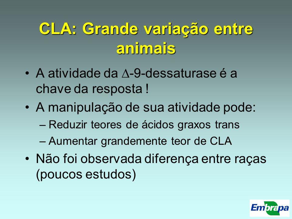 CLA: Grande variação entre animais