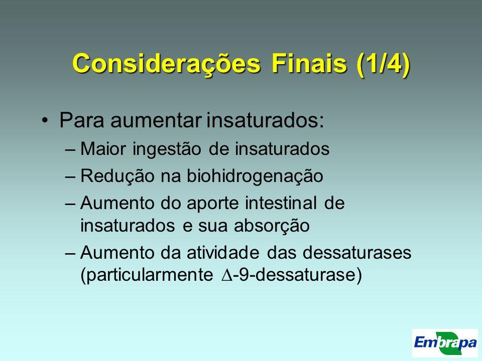 Considerações Finais (1/4)