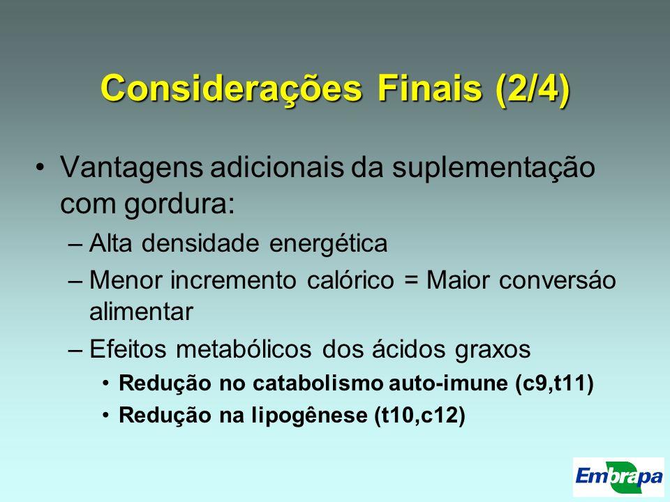 Considerações Finais (2/4)