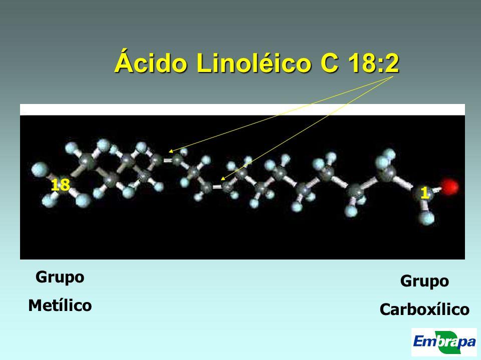 Ácido Linoléico C 18:2 18 1 Grupo Metílico Grupo Carboxílico