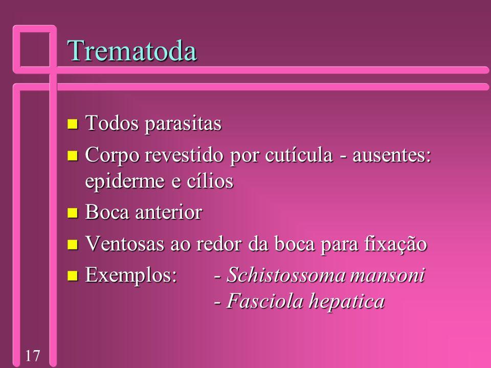 Trematoda Todos parasitas