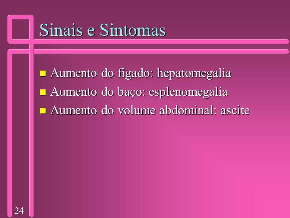 Sinais e Sintomas Aumento do fígado: hepatomegalia