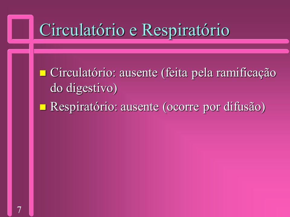 Circulatório e Respiratório