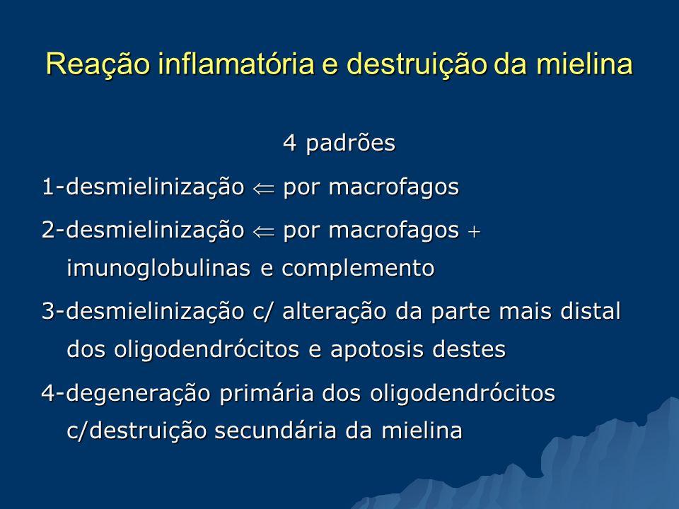 Reação inflamatória e destruição da mielina