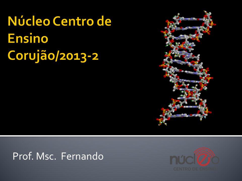 Núcleo Centro de Ensino Corujão/2013-2