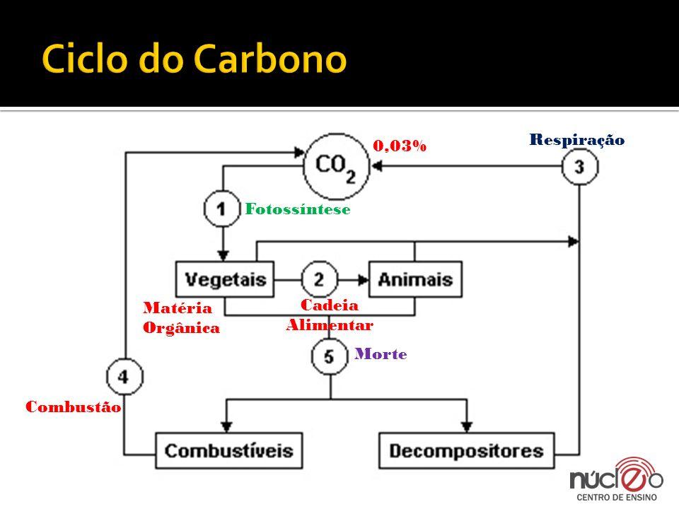 Ciclo do Carbono Respiração 0,03% Fotossíntese Cadeia Alimentar