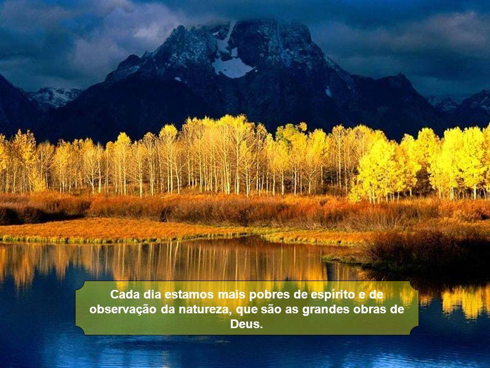 Cada dia estamos mais pobres de espírito e de observação da natureza, que são as grandes obras de Deus.