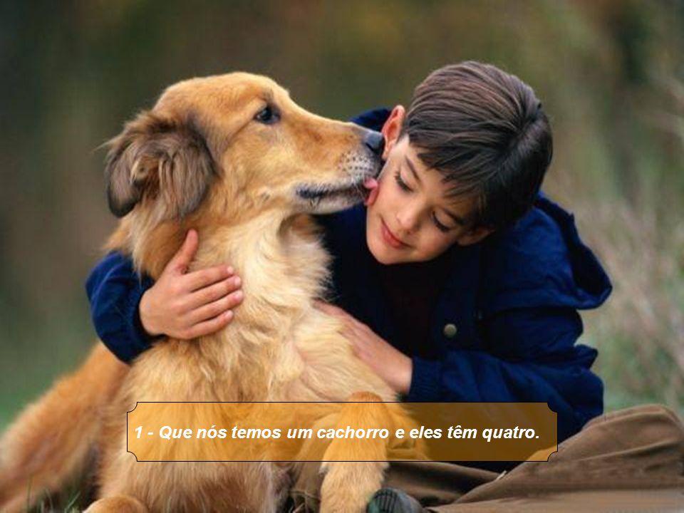 1 - Que nós temos um cachorro e eles têm quatro.