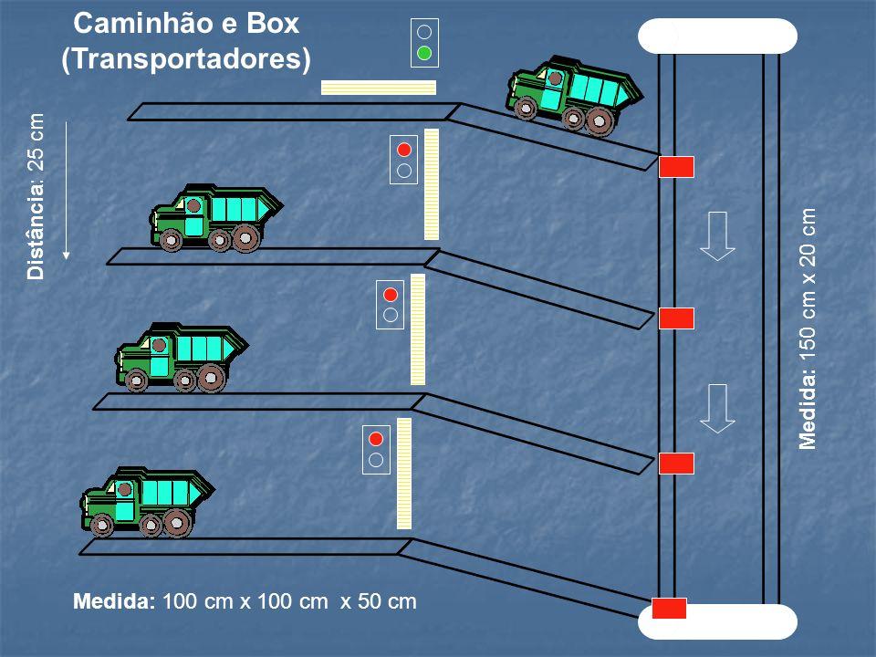 Caminhão e Box (Transportadores)