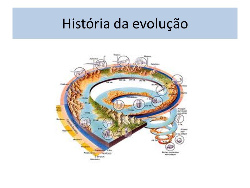 História da evolução
