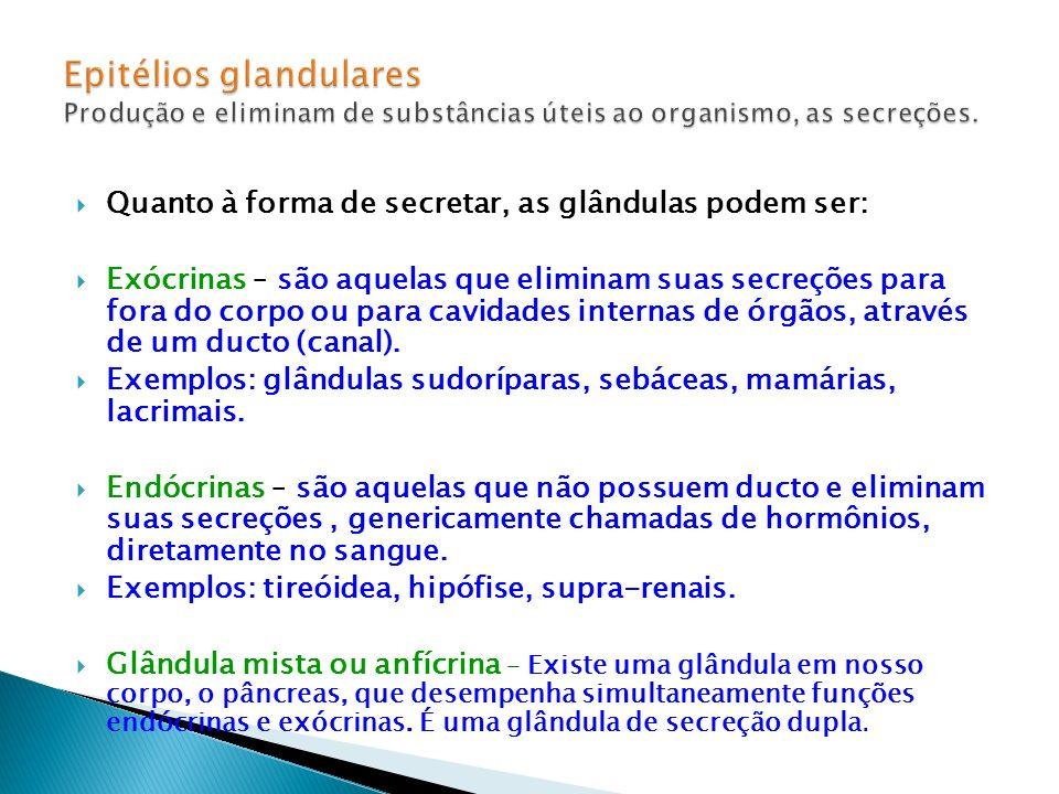 Epitélios glandulares Produção e eliminam de substâncias úteis ao organismo, as secreções.