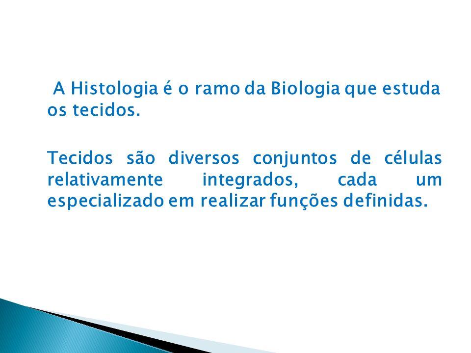 A Histologia é o ramo da Biologia que estuda os tecidos