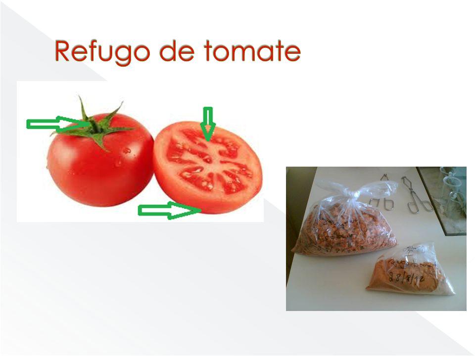 Refugo de tomate - Se estiver seco pode-se armazenar pois dura mais tempo que outros produtos.