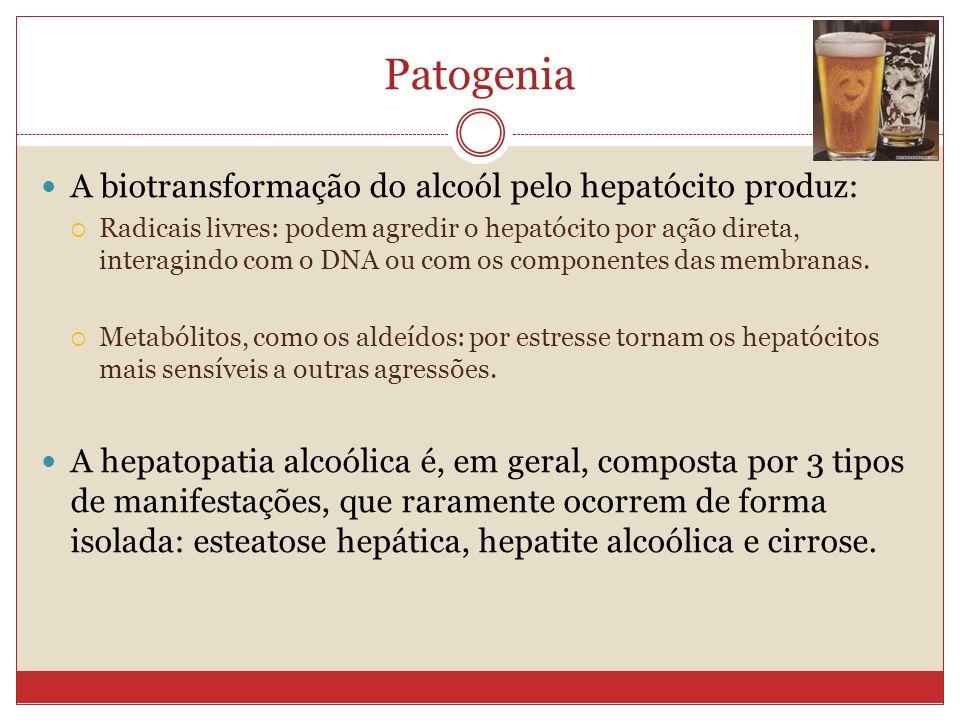 Patogenia A biotransformação do alcoól pelo hepatócito produz:
