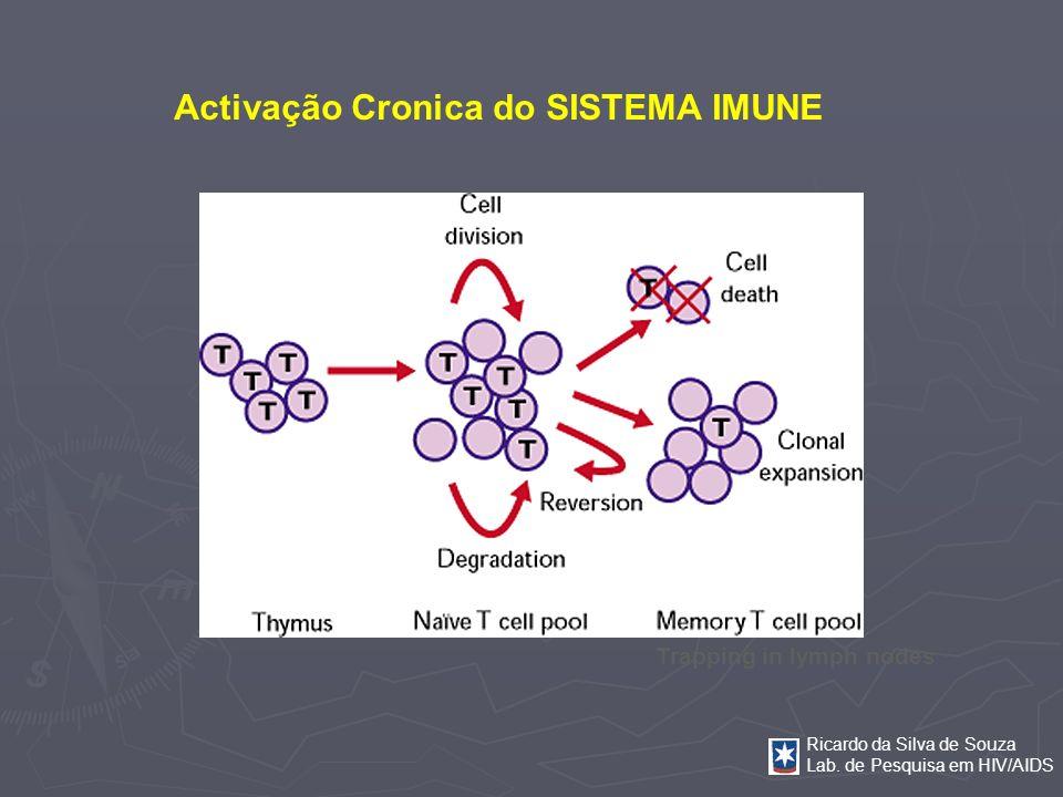 Activação Cronica do SISTEMA IMUNE