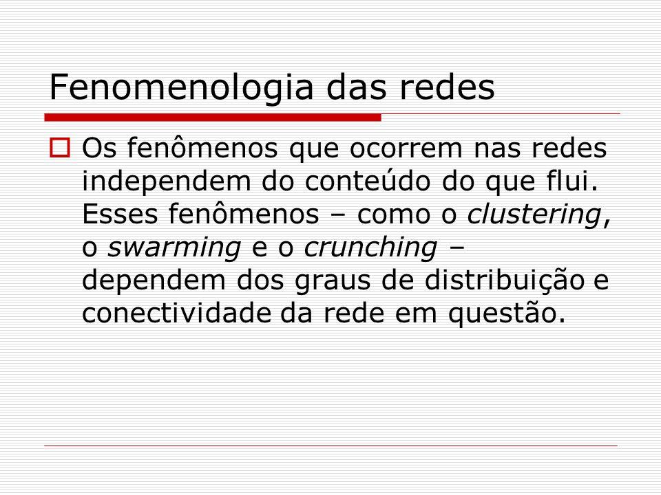 Fenomenologia das redes