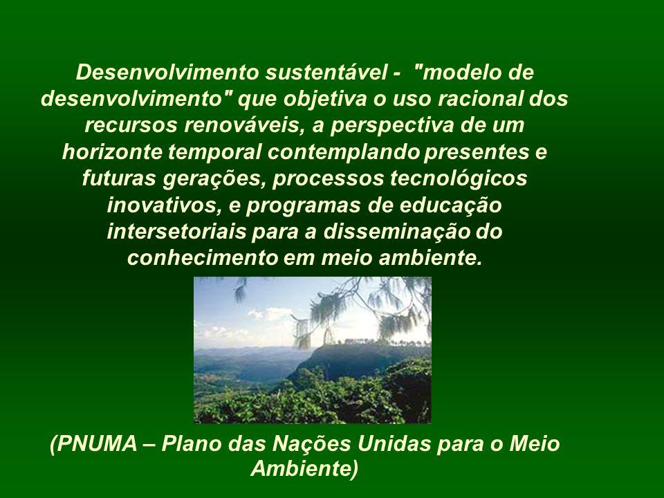 (PNUMA – Plano das Nações Unidas para o Meio Ambiente)