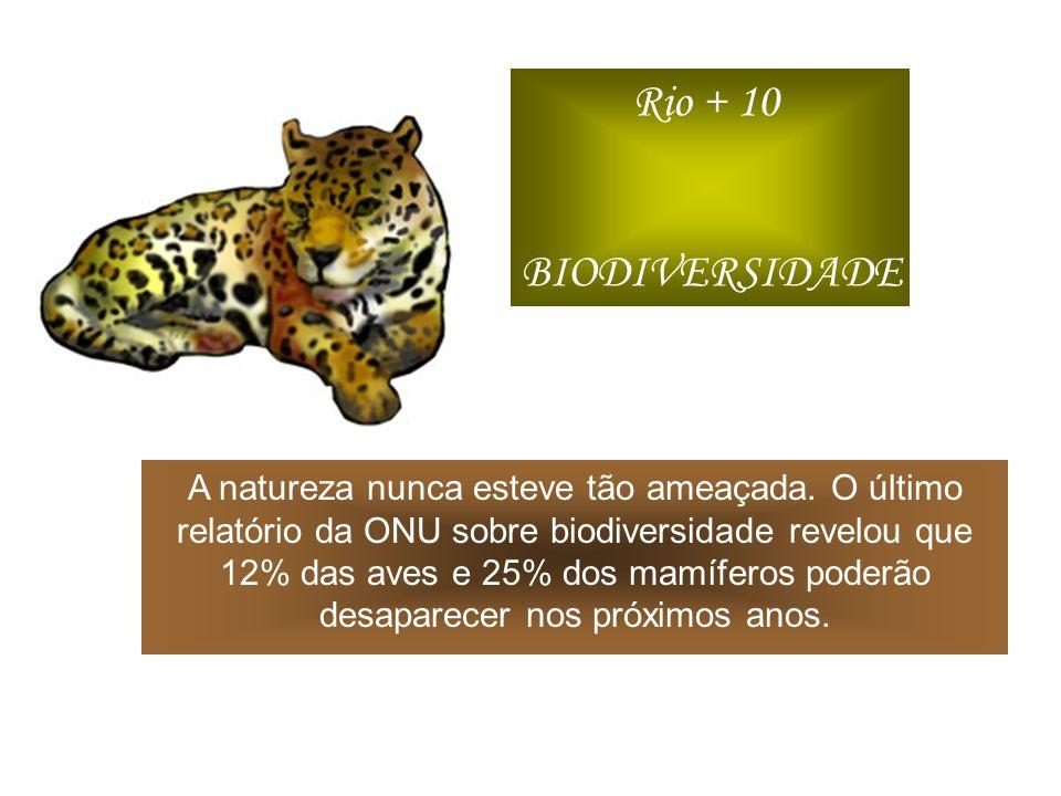 Rio + 10 BIODIVERSIDADE.