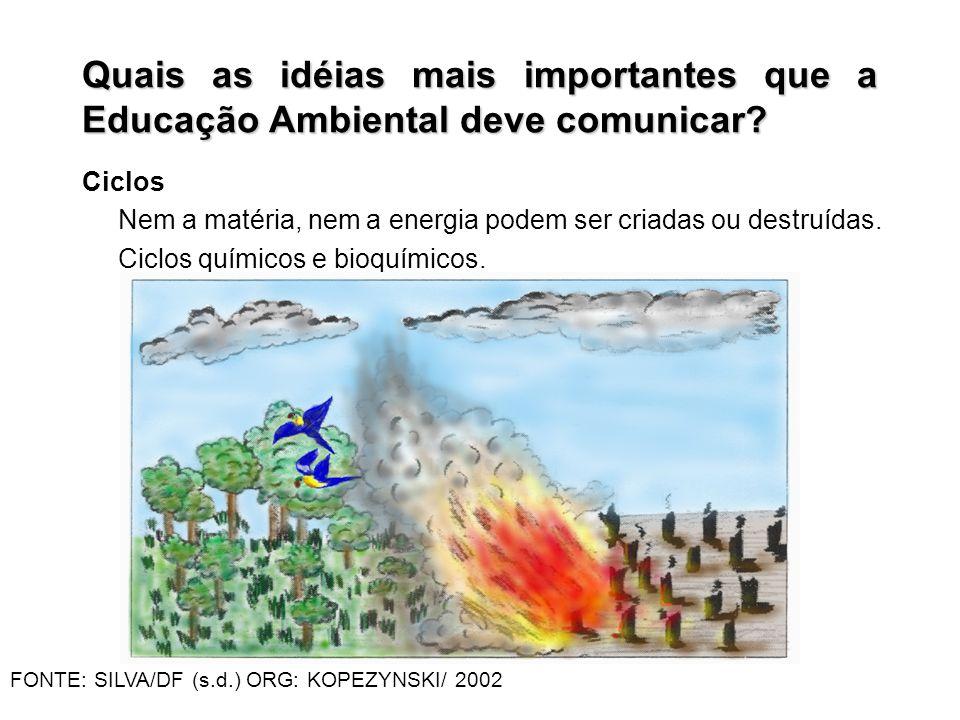 Quais as idéias mais importantes que a Educação Ambiental deve comunicar