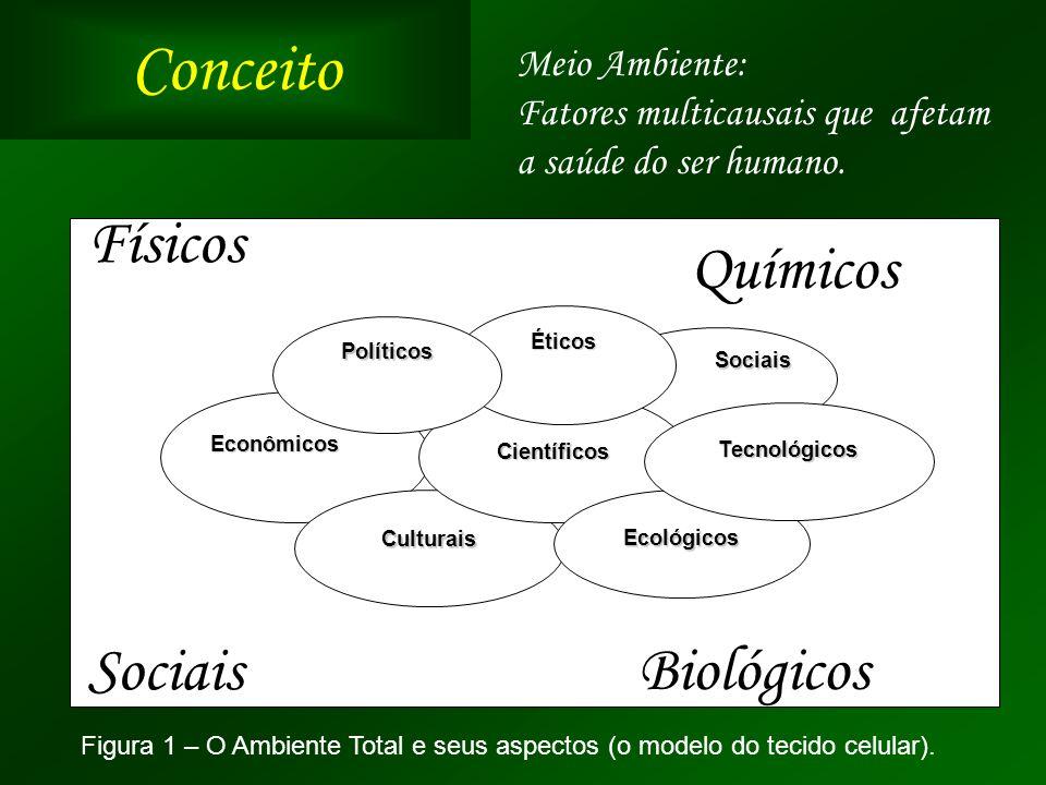 Conceito Físicos Químicos Sociais Biológicos Meio Ambiente: