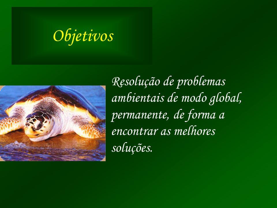 Objetivos Resolução de problemas ambientais de modo global,
