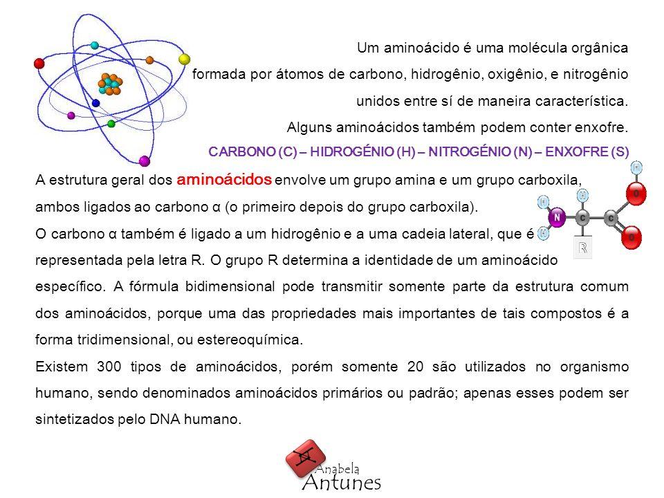 A Antunes Um aminoácido é uma molécula orgânica