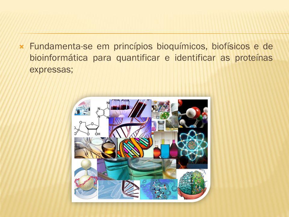 Fundamenta-se em princípios bioquímicos, biofísicos e de bioinformática para quantificar e identificar as proteínas expressas;