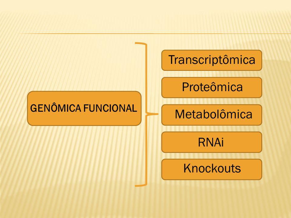Transcriptômica Proteômica Metabolômica RNAi Knockouts