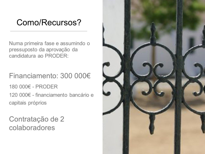 Como/Recursos Financiamento: 300 000€ Contratação de 2 colaboradores